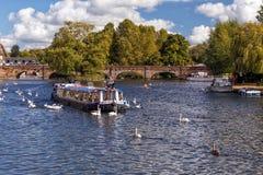 Kryssa omkring på floden Avon, Stratford på Avon, England Royaltyfria Bilder