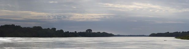 Kryssa omkring på floden amasonen, i regnskogen, Brasilien Royaltyfria Bilder