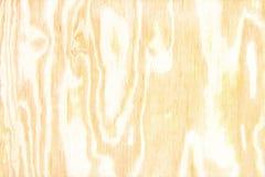 Kryssfanertextur med den naturliga modellen, wood korn för bakgrund Royaltyfri Bild