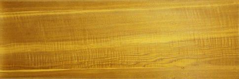 Kryssfanertextur med den naturliga modellen Wood korn f?r bakgrund royaltyfri bild