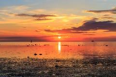 Kryssningeyelinerskepp i solnedgång i havet Royaltyfri Fotografi