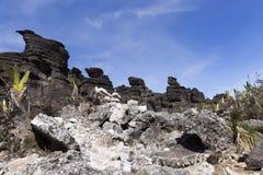 Krystaliczna dolina, góra Roraima zdjęcia royalty free