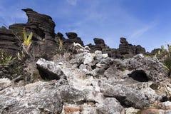 Krystaliczna dolina, góra Roraima obraz royalty free