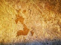 Krystaliczna substancja na cementowej podłodze obraz royalty free