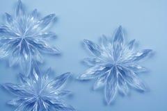 krystaliczni płatki śniegu Obrazy Royalty Free
