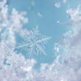 Krystaliczny Błękitny płatek śniegu dniem zdjęcia royalty free