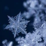 Krystaliczny Błękitny płatek śniegu przy nocą jpg zdjęcia royalty free