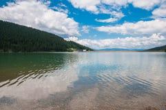Krystaliczny czysty sztuczny jezioro blisko sosnowego lasu w Rumunia Fotografia Stock