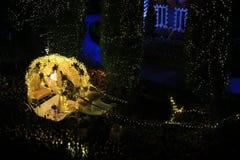 Krystaliczny kareciany ogrodnictwo projekt Zdjęcie Royalty Free