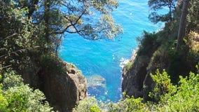 Krystaliczny morze z drzewami na skałach w Paraggi zatoce w Portofino parku narodowym w Włochy zdjęcie wideo