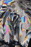 krystalizujący cukier Obrazy Stock