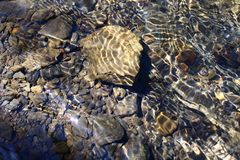 Kryształ - jasna woda nad otoczakami i kamieniami zdjęcia royalty free