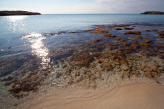 kryształ plażowa jasna woda Fotografia Stock
