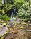 Kryształ Skacze Rododendronowi ogródy obraz royalty free