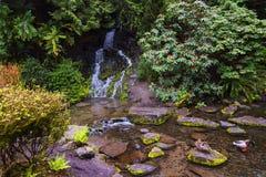 Kryształ Skacze Rododendronowi ogródy zdjęcia royalty free