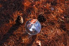kryształowa kula na jesieni ziemi nieżywych liściach i fotografia stock