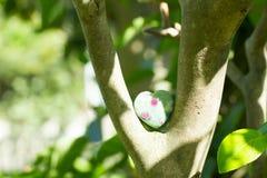 Kryształu kamień w zielony plenerowym Zdjęcia Royalty Free