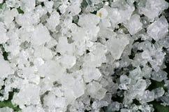Kryształy prostacki seasalt -2 obraz stock