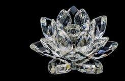 Kryształ kwiat Zdjęcia Stock