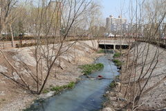 kryzysu ekologiczny środowiskowy fotografii zanieczyszczenie Zdjęcia Royalty Free