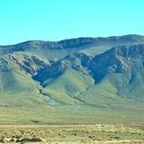 krzak w dolinnym Morocco Africa atlant sucha góra Obraz Royalty Free