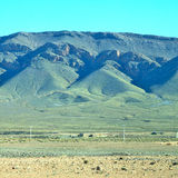 krzak w dolinnym Morocco Africa atlant sucha góra Obraz Stock