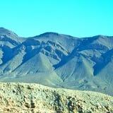 krzak w dolinnym Morocco Africa atlant sucha góra Fotografia Stock