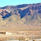 krzak w dolinnym Morocco Africa atlant sucha góra Zdjęcie Stock