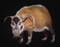 Krzak świnia obrazy stock