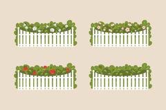 Krzaki bielu ogrodzenie również zwrócić corel ilustracji wektora Zdjęcie Stock