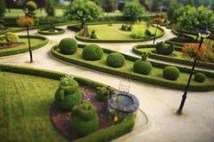 krzaki ciący ogrodowy społeczeństwo Fotografia Stock
