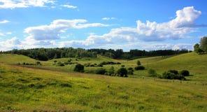 Krzaki i deciduous lasy na wzgórzach Obraz Stock