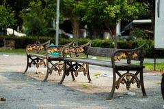 krzesła lokalizować jeden inny parkowy basen Zdjęcie Royalty Free