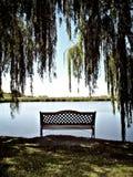 krzesło banku człowiek jest rzeka Zdjęcie Royalty Free
