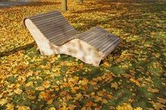 Krzesło kolor żółty opuszcza jesień Obraz Stock