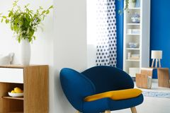 Krzesło w żywym pokoju obrazy royalty free