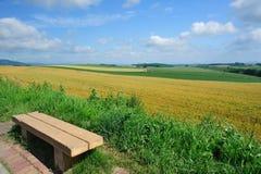Krzesło, pszeniczny pole i niebieskie niebo Obraz Royalty Free