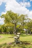 Krzesło w ogródzie fotografia stock