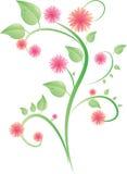 krzew liść różowe kwiaty Zdjęcia Stock