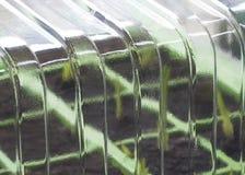 krzewiciel roślinnych obrazy stock