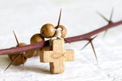 Krzyża i cierni Easter religii abstrakcjonistyczny pojęcie Fotografia Stock