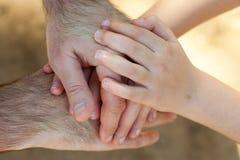 Krzyżować ręki dorosły i dziecko Zdjęcie Royalty Free