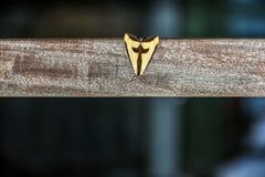 Krzyżowa ćma Zdjęcia Royalty Free