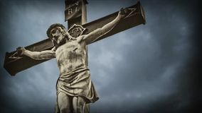 Krzyżowanie. zdjęcie wideo