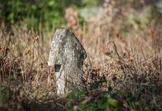 Krzyże na starym zaniechanym cmentarzu Obraz Stock