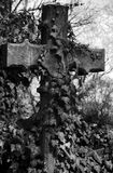 Krzyż na cmentarzu Obraz Stock