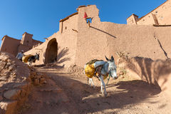 Ksar of Ait Ben Hadu, Morocco Royalty Free Stock Image
