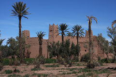Ksar in Skoura with palm trees Stock Images