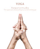 Ksepana mudra. Hands in Ksepana mudra by Indian man isolated on white background. Free space for your text Royalty Free Stock Photo