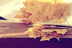 Książek strony z suchymi jesień liśćmi Obrazy Royalty Free